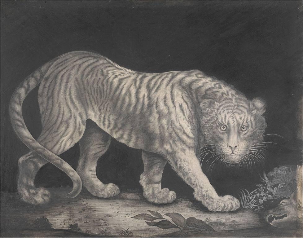Elizabeth-Pringle-A-Prowling-Tiger-ca.-1800.jpg